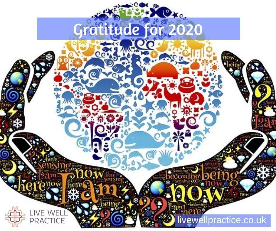 gratitude for 2020